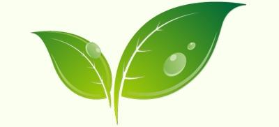 Натуральна органічна косметика, натуральні біодобавки, бальзам живиця купити