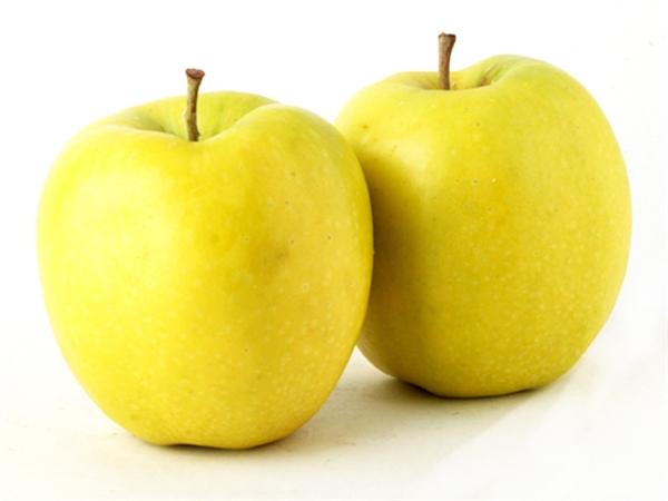 сорт яблок голден делишес фото