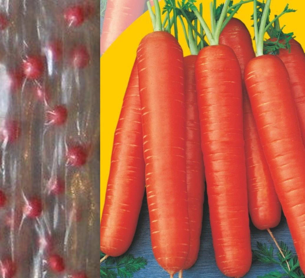 Семена оптом от производителя - оптовая продажа по каталогу