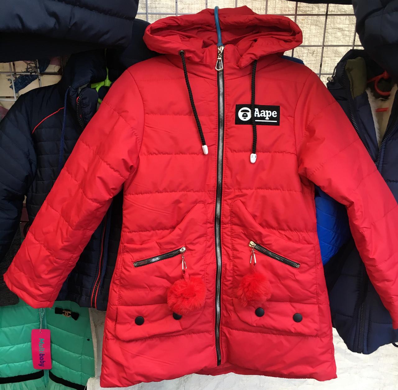 Дитяча демісезонне куртка оптом 4-8 років - Товари - Дитячий одяг ... 9e8091fe8a82f
