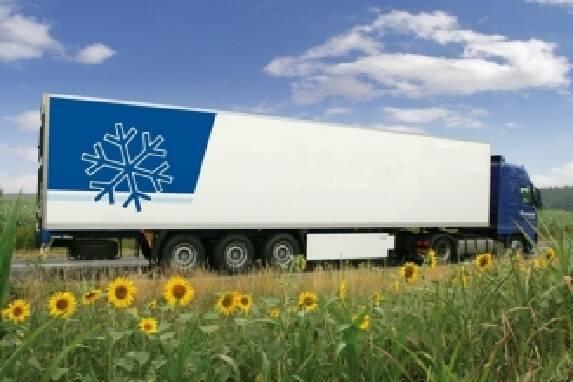 Перевезення харчових продуктів: безпека понад усе!