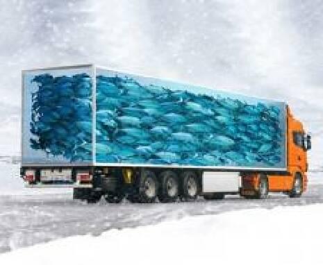 Заказать рефрижератор 20 тонн на voliatrans.ub.ua
