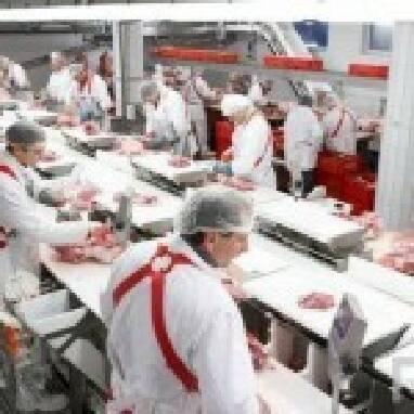 Работник куриного завода