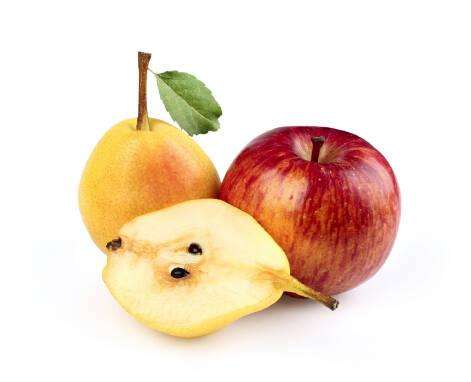 Купить груши и яблоки оптом в фермерском хозяйстве