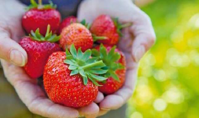 Купити недорого комплексне мінеральне добриво для полуниці