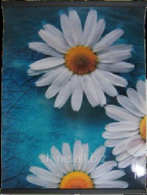 Обігріваючий килимок на стіну вигідно та економно - Оголошення ... cbebec458b6b8