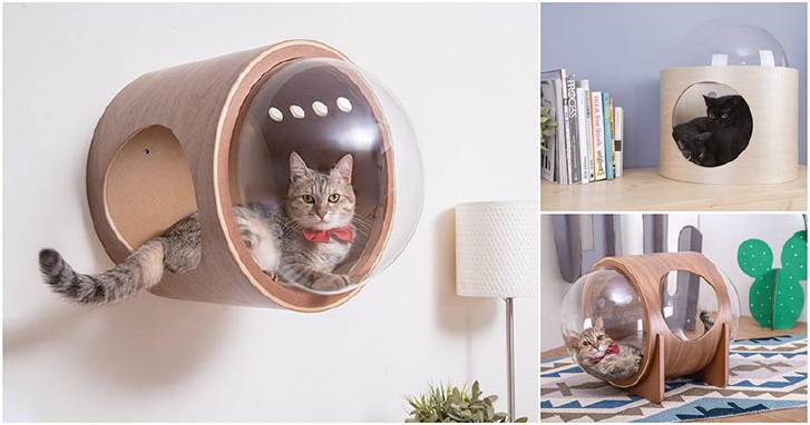 Кошачьи спальни-капсулы
