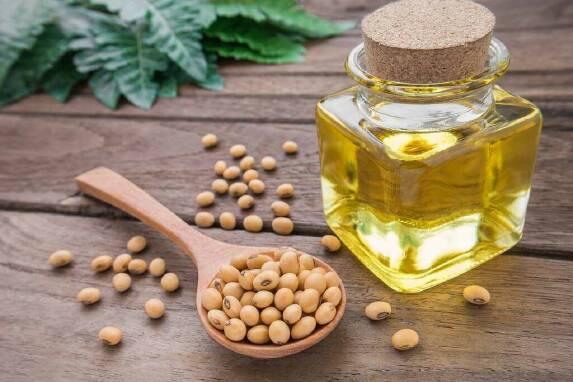 Масла рослинного походження купити оптом недорого