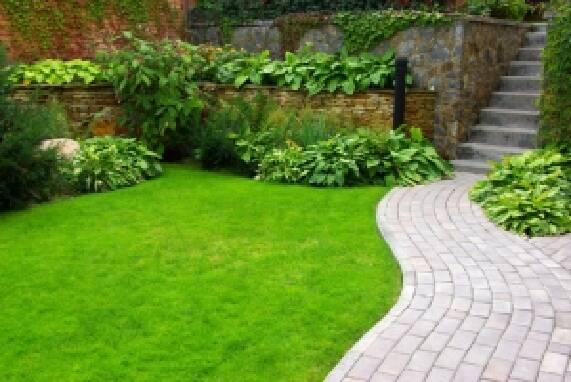 Пропонуємо купити газонну траву за низькими цінами!