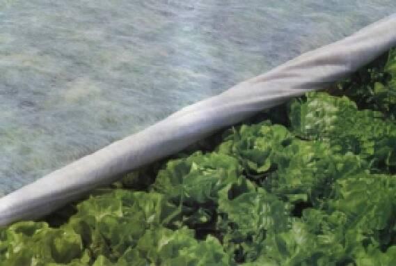 Покупайте агроволокно - для лучшего урожая!