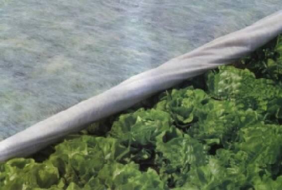 Довговічне і екологічне агроволокно Plantex за низькими цінами!