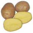 Картофель Околица за 4 кг ІКР-105-П4
