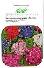 Інтернет магазин насіння квітів за доступною ціною Україна
