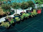 Агротканина купити Україна