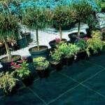 Агротканина купити недорого