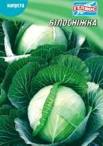 Купити насіння капусти оптом недорого