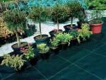 Агротканина купити вигідно можна в компанії Новосад!