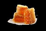 Купити продукти бджільництва в Києві: доступні ціни, натуральний склад