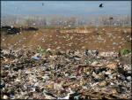 Ми пропагуємо сортування сміття для подальшої переробки