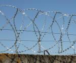 Купуйте дріт сталевий оцинкований в Україні