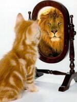 Пропонуємо купити дзеркало