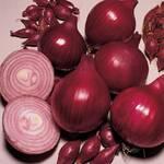 Лук севок Ред Барон (фото)