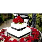 Оригінальні торти на замовлення (фото)