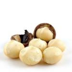 Макадамія (австралійський горіх) оптом (фото)