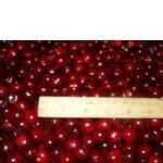 Морожена вишня з кісточкою (фото)