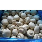 Гриби білі заморожені оптом (фото)