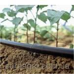 Багаторічна трубка для краплинного поливу (фото)