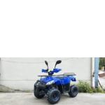 Квадроцикл TIGER B-110CC 110 cm3 (фото)