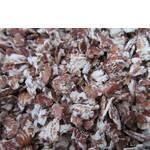 Пластівці Пшениці чорнозерної (фото)