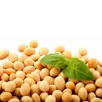 Соя без ГМО Україна (фото)