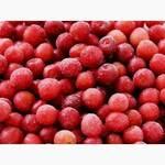 Заморожена вишня з кісточкою (фото)