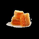 Стільниковий мед (фото)