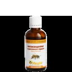 Настоянка бджолиного підмору (фото)