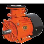 Двигатели асинхронные взрывобезопасные, рудничные типа ВРП