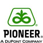Семена кукурузы Пионер - известны своим высоким потенциалом урожайности во всем мире