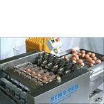Упаковка яиц яйцеупаковщиком IDRA 14.5