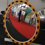 Обзорное зеркало производственной безопасности, Николаев