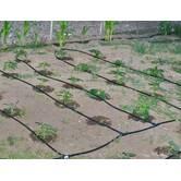 Монтаж системи крапельного поливу