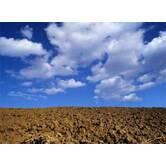 Експертна оцінка землі, земельних ділянок - Одеса, область