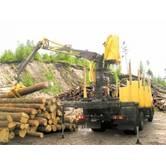 Гидроманипуляторы для погрузки леса: заказать ремонт здесь