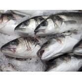 Імпорт риби і морепродуктів з країн Скандинавії і Балтії оптом