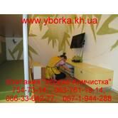 Генеральная уборка квартир и домов, Харьков и область