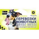 Перевезення домашніх тварин в дешевому таксі Києва