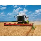 Услуги по сбору урожая сельскохозяйственных культур в Украине