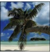 Відпочинок на морі - відпочивайте, як боги!