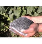 Best price of graphite powder!